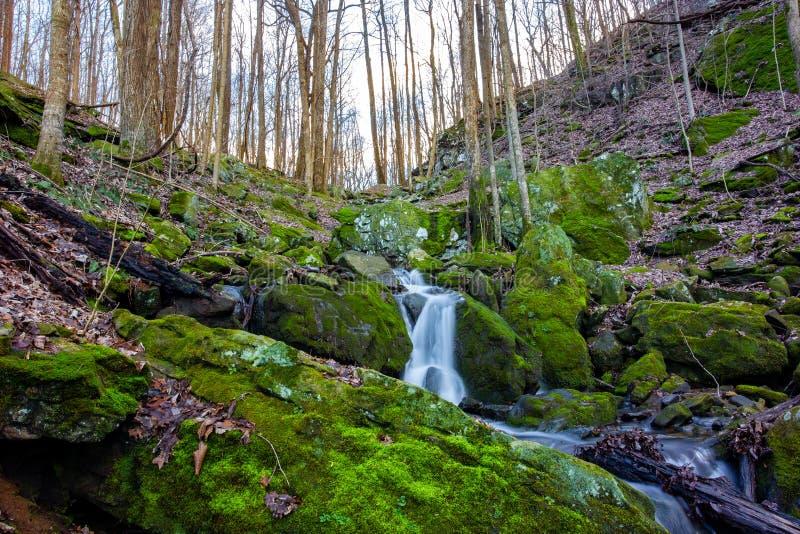 Mountainside beauty hidden stock images