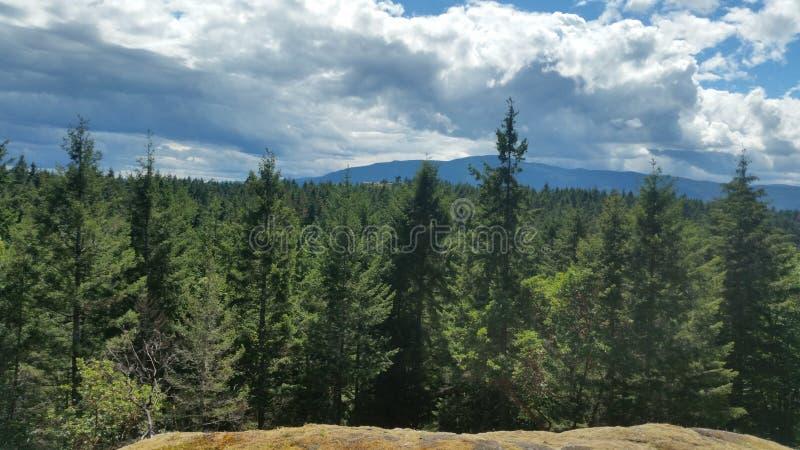 mountaintop fotos de stock royalty free
