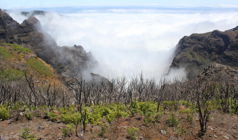 Mountainview επάνω από τα σύννεφα στοκ εικόνες με δικαίωμα ελεύθερης χρήσης