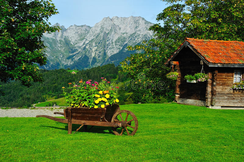 Mountainview with flowers royalty free stock photos