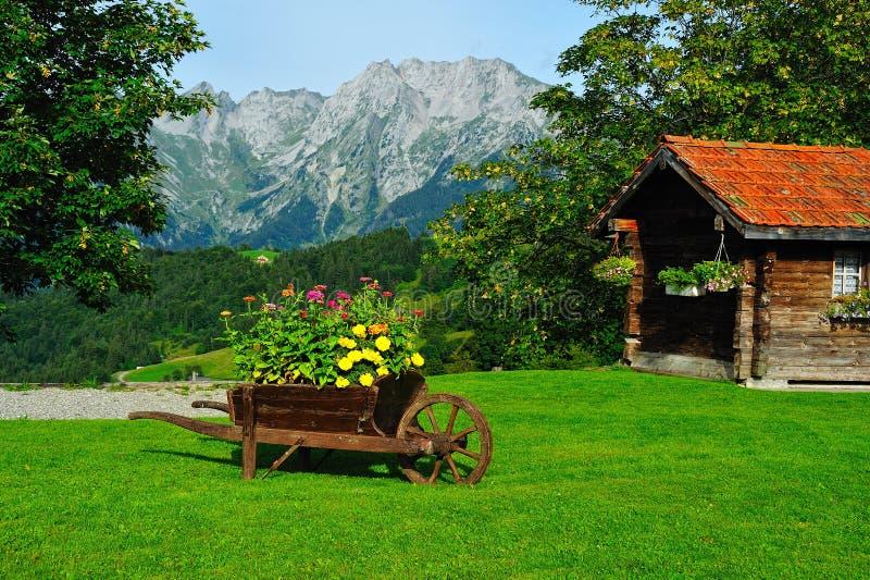 Mountainview mit Blumen lizenzfreie stockfotos