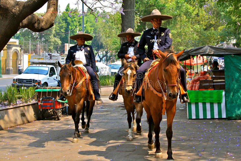 Mounted Police in Mexico City royalty free stock photo