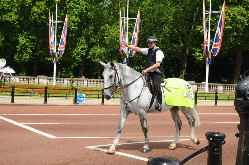 Download Mounted Police Officer editorial image. Image of animal - 17402820
