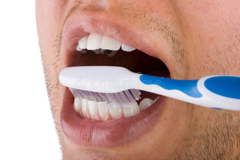 Mounth und Zahnbürste stockbilder