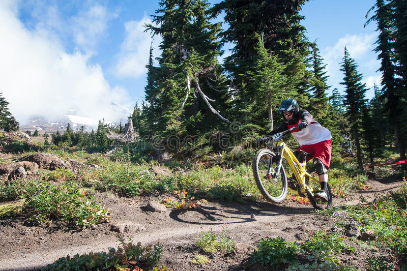 Mountian Biker and Mt. Hood royalty free stock images