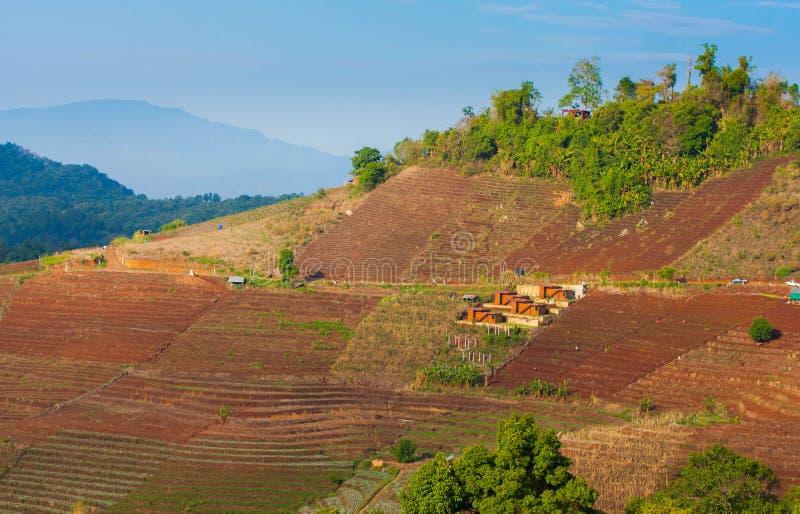 Mountian in Chiangmai stock image