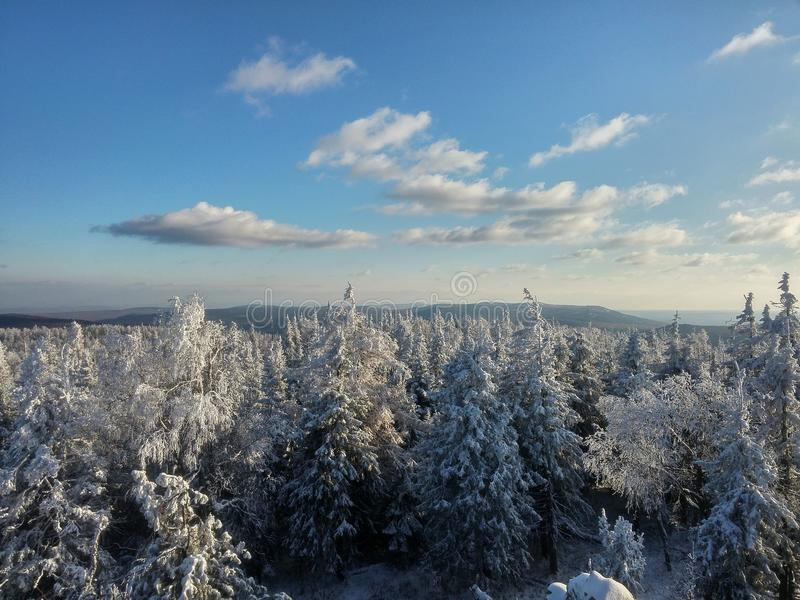 Mountin, forest, and snow. Beautiful. royalty free stock photos