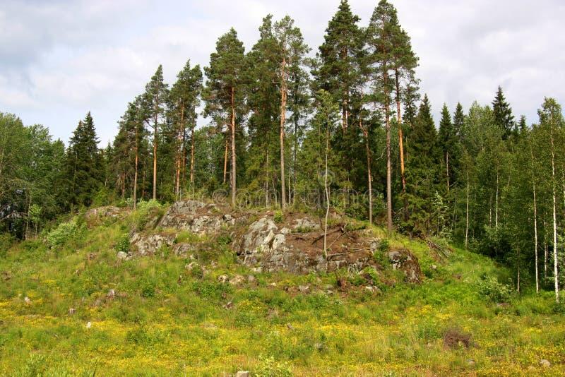Mountin-Hügellandschaft stockbilder