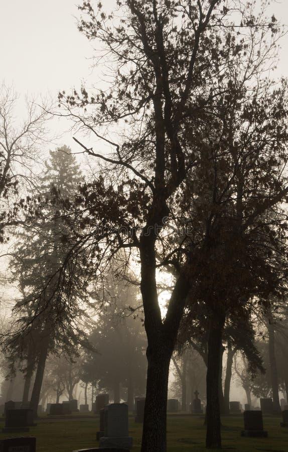 Mountview-Kirchhof-morgens Nebel lizenzfreie stockbilder