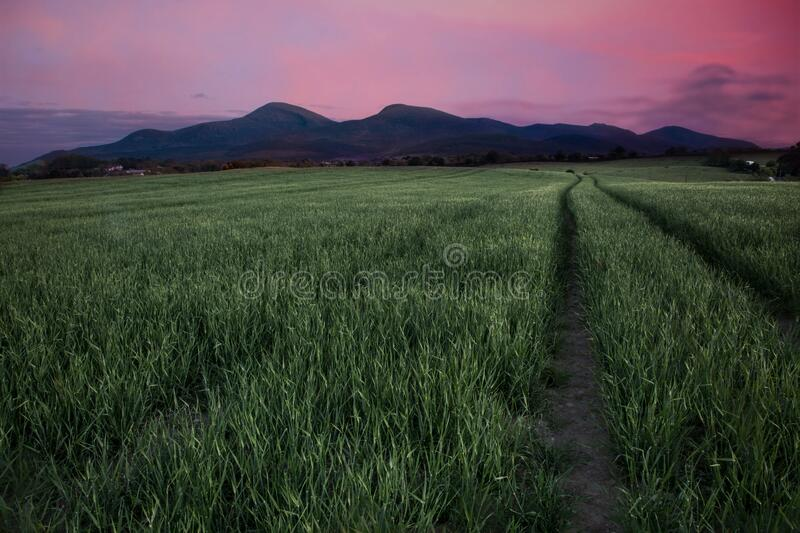 Mourne Mountains At Sunset  stock photo