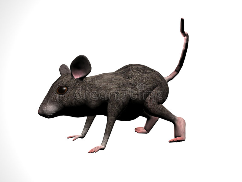 Mouse Cartoon Right royalty free illustration