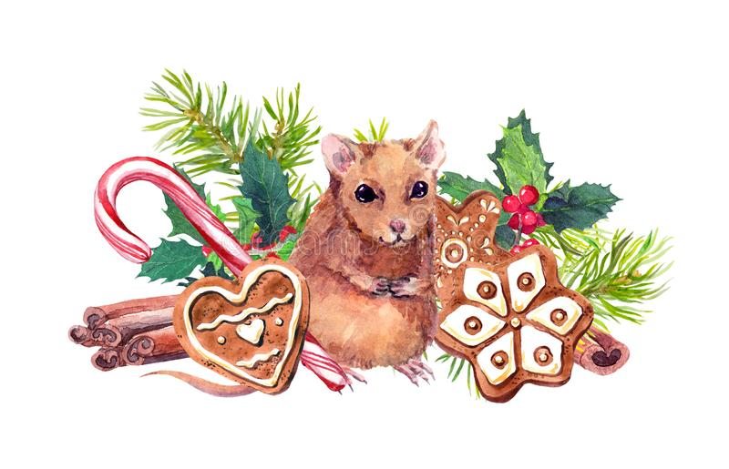 Mouse with Christmas symbols watercolor illustration. Cute brown rat near ginger cookies, fir branches and mistletoe stock illustration