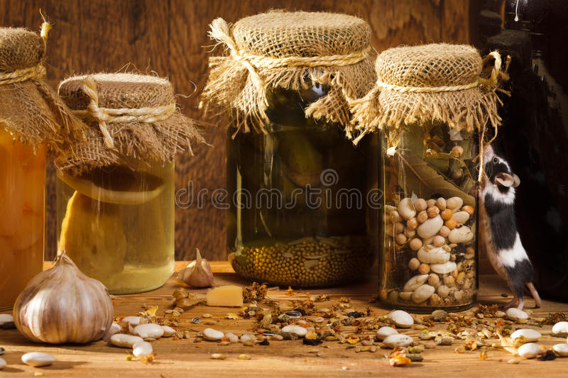 Mouse climb to the jar stock photography