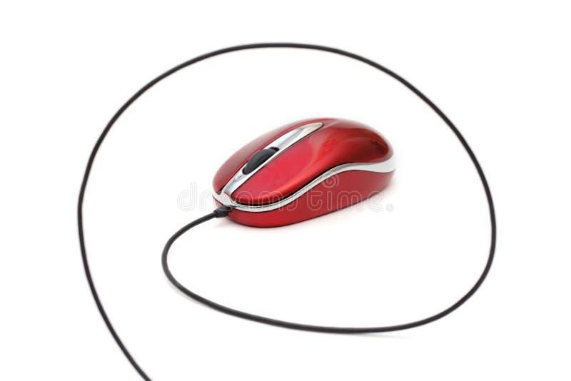 Mouse del calcolatore fotografia stock