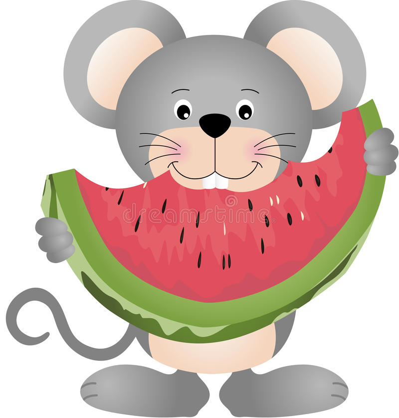 Mouse eating watermelon stock illustration