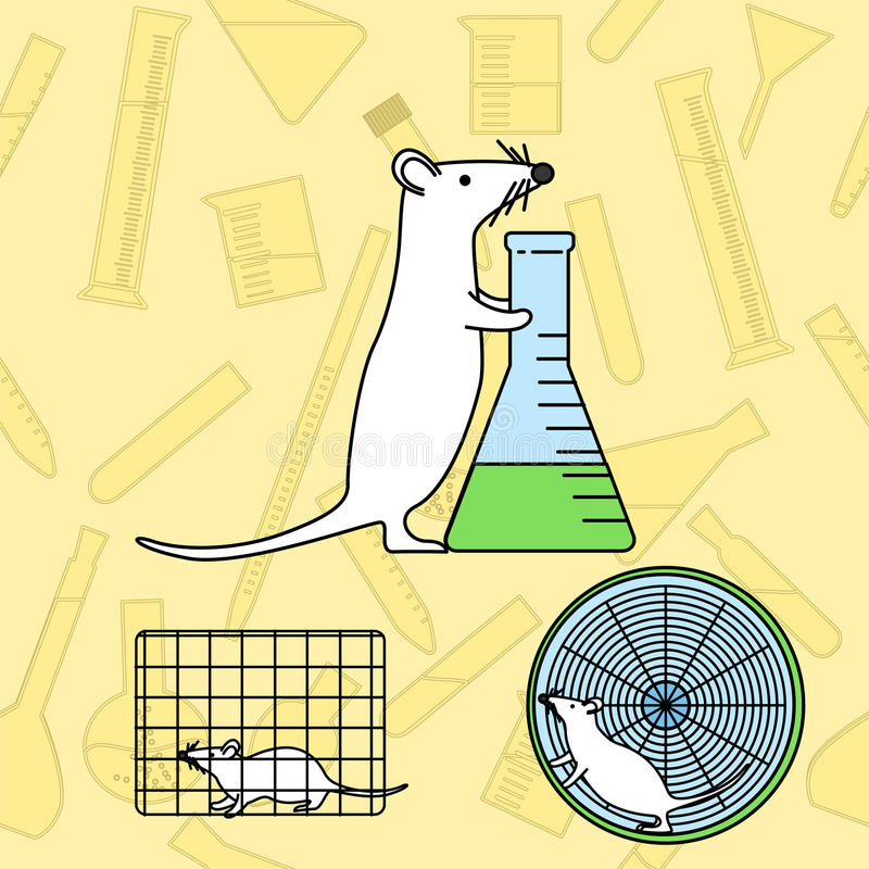 Mouse in lab experiments. Mouse with a flask in lab experiments. Stock vector illustration of usual procedures using mice in medical biological research stock illustration