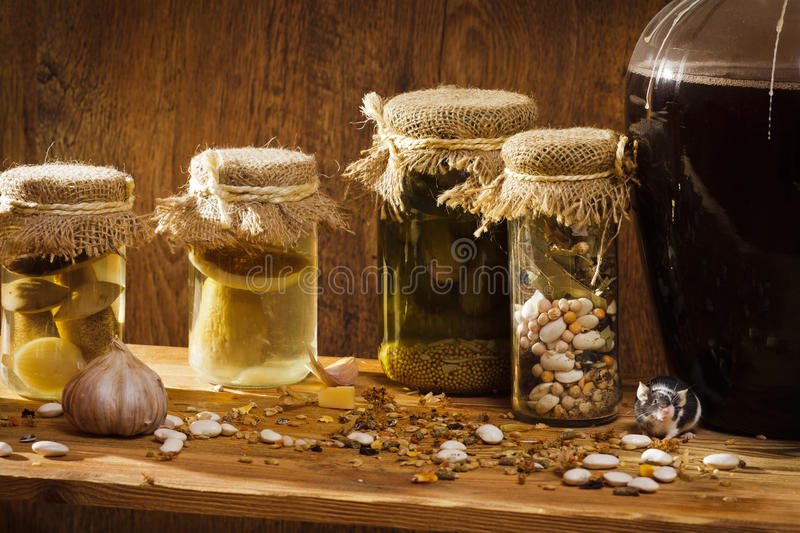 Mouse in larder with stockpiles stock photo