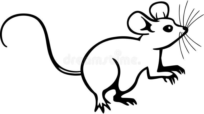 Line Art Rat : Mouse stock vector illustration of mammal artwork