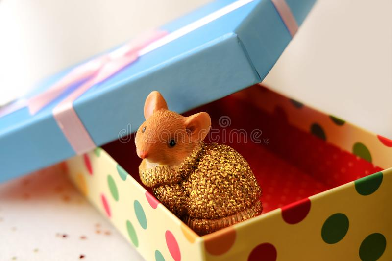 Mouse sits in a gift box.Box with a blue lid and a pink bow A little fluffy rat sits in a festive gift box.Symbol of Rat 2020. Prosperity. Financial success royalty free stock photo