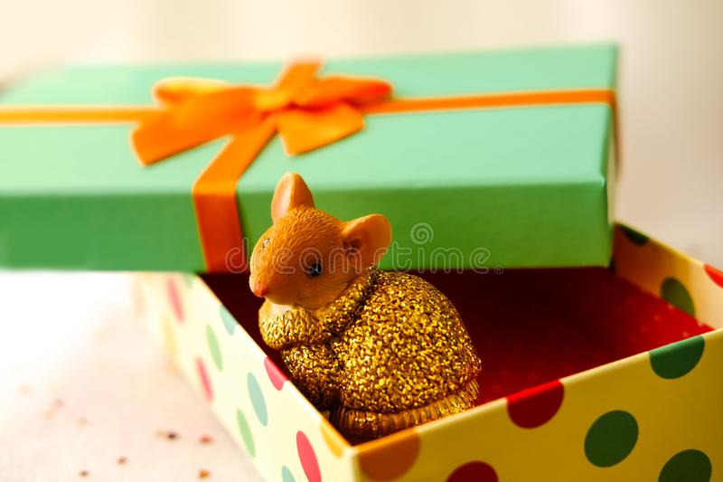 Mouse sits in a gift box.Box with a green lid and a orange bow A little fluffy rat sits in a festive gift box.Symbol of Rat 2020. Prosperity. Financial success stock photography