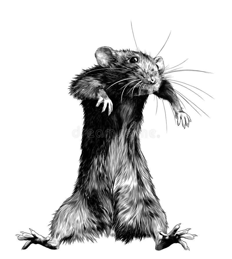 Mouse steht hoch und tanzt lizenzfreie abbildung