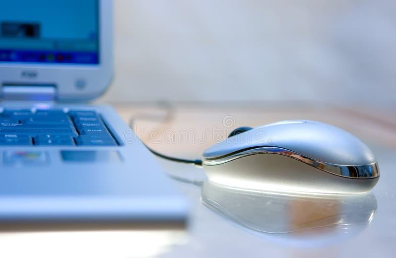 Mouse sulla tabella polverosa immagini stock