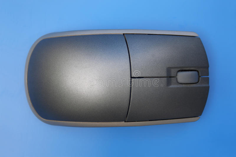 Mouse top view