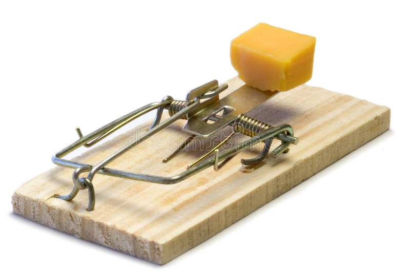Mouse Trap. Cheese royalty free stock photography