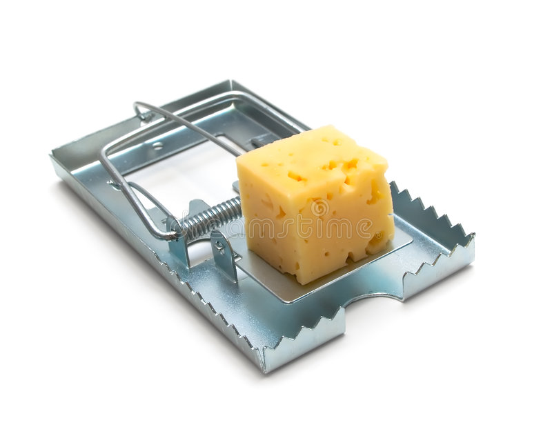 Mouse trap. With cheese isolated royalty free stock image