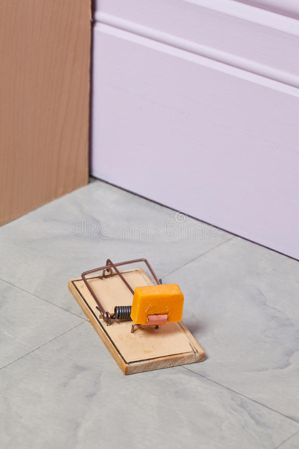 Download Mouse Trap stock photo. Image of catch, incentive, beware - 32451106