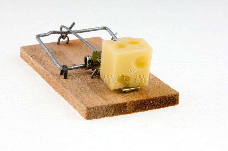 Mouse trap with cheese. royalty free stock images