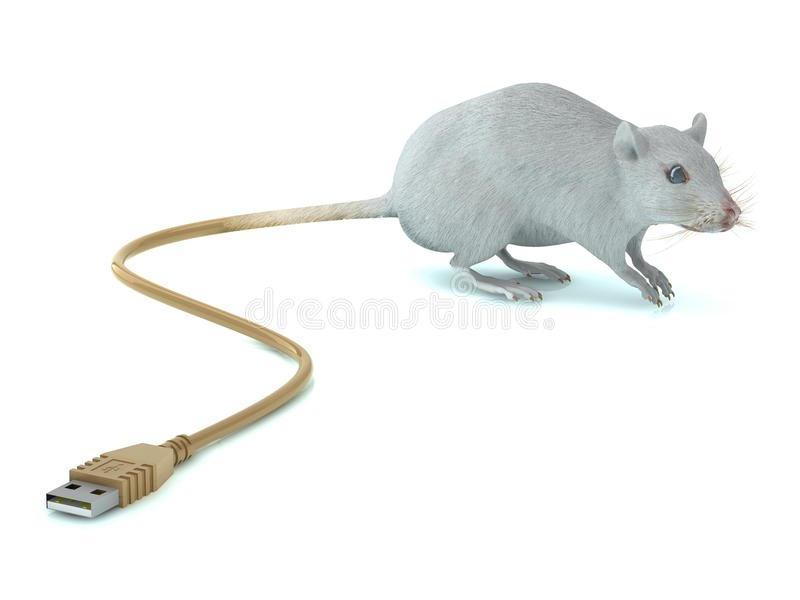 Mouse With USB Tail Stock Photography