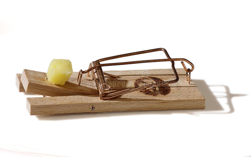Download Mousetrap stock photo. Image of isolated, wood, lure - 13462656