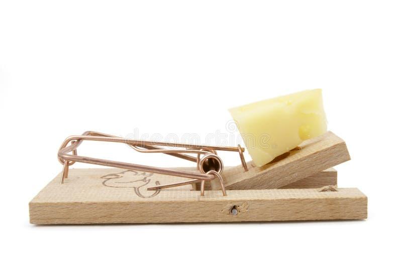 mousetrap 2 arkivfoto