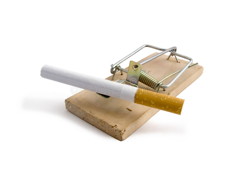 mousetrap стоковые изображения