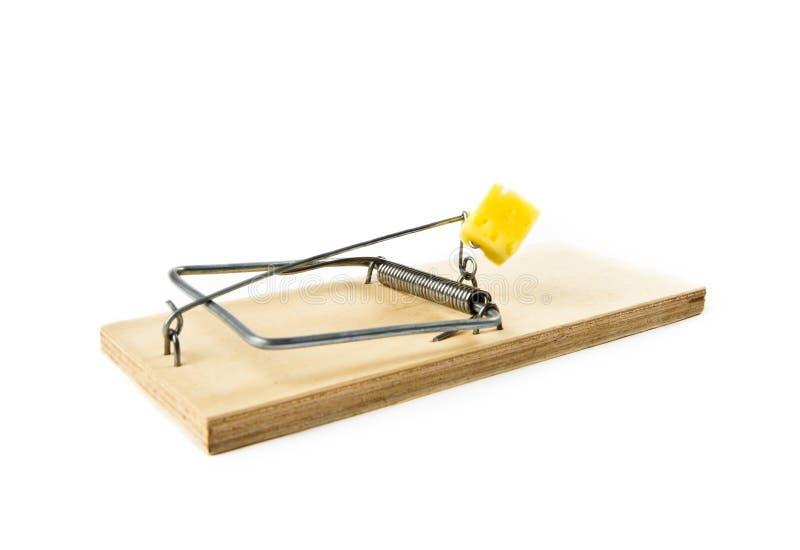 mousetrap royaltyfri foto