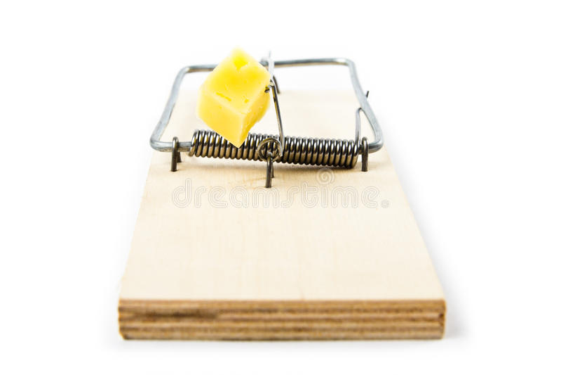 mousetrap royaltyfria foton