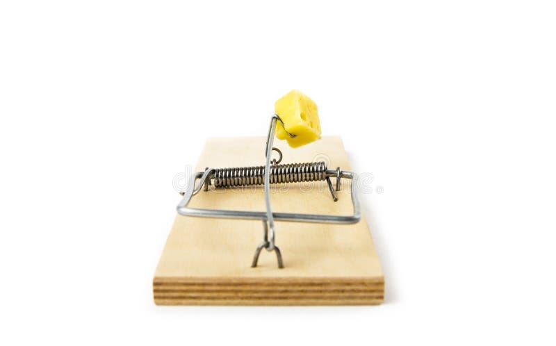mousetrap royaltyfri fotografi