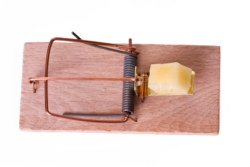 Mousetrap with cheese stock images