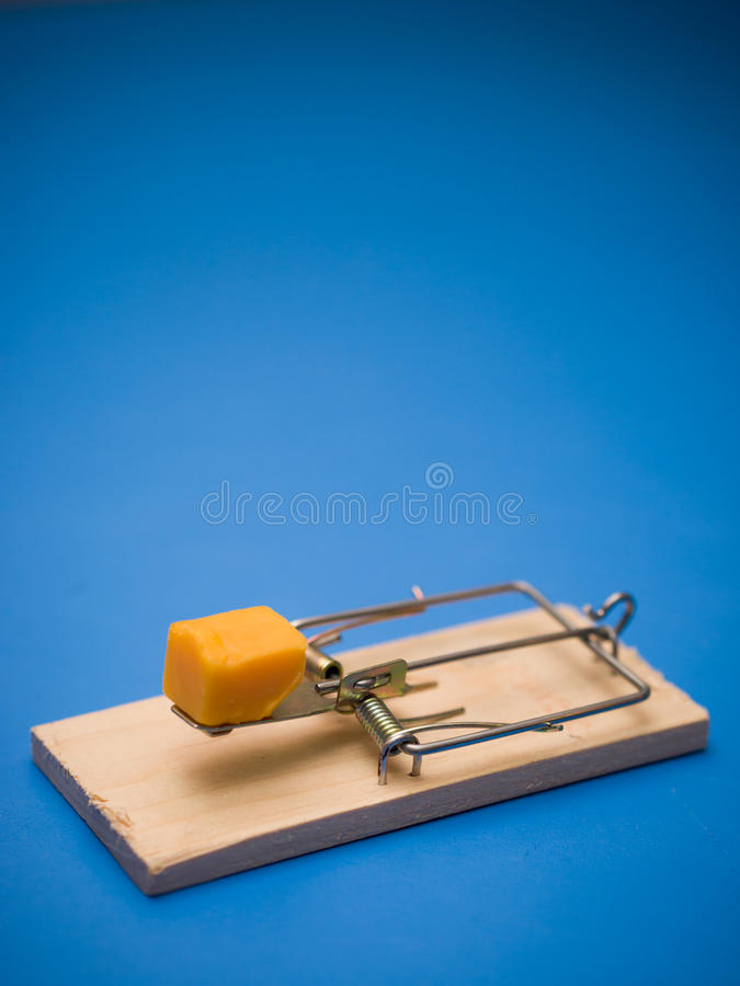 Download Mousetrap with cheese stock image. Image of lure, vermin - 24614515
