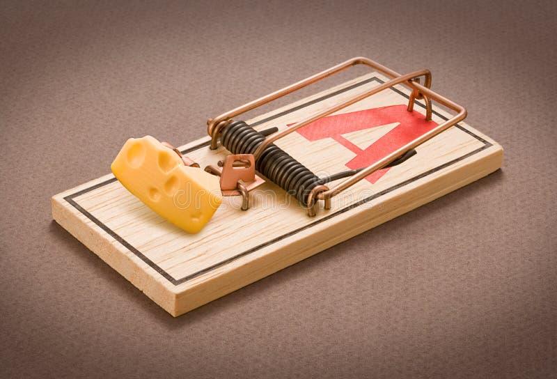 Mousetrap com queijo fotos de stock