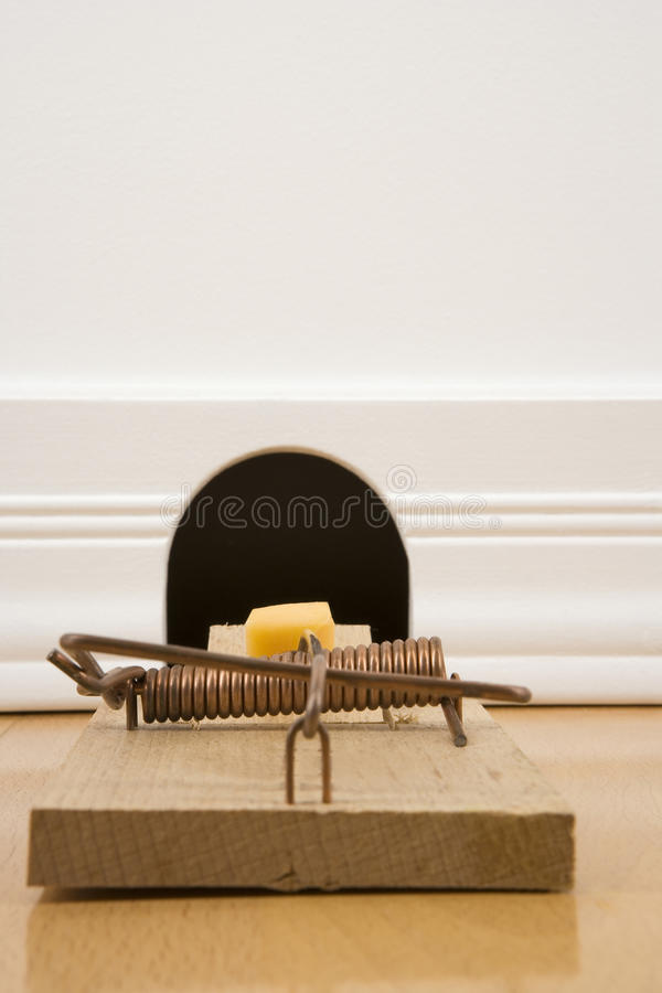 Mousetrap In Front Of A Mouse Hole Royalty Free Stock Photography