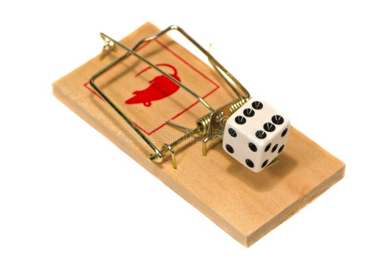 Mousetrap med kasinotärningbegreppet som isoleras på vit arkivbild