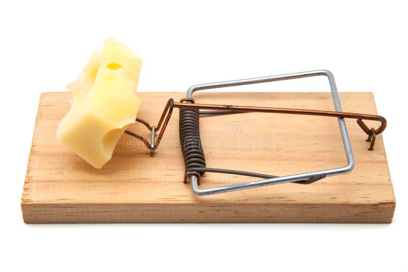 Mousetrap med ost arkivbilder