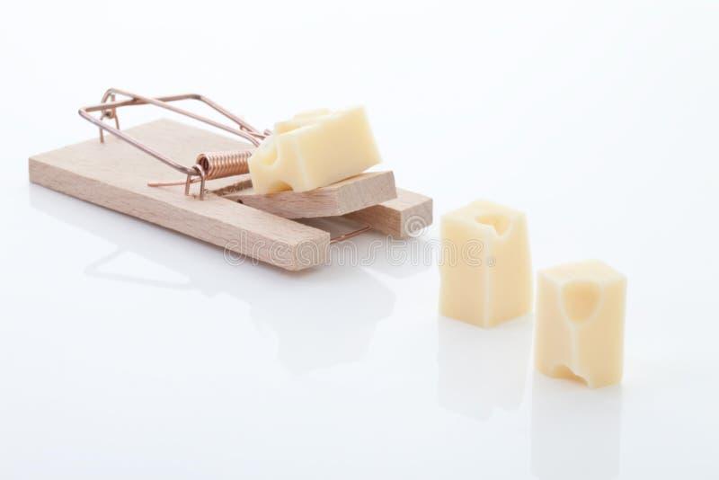Mousetrap med ost fotografering för bildbyråer