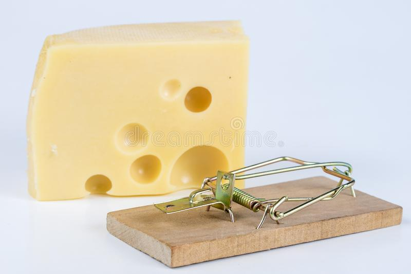 Mousetrap on a white table. Trap with yellow cheese as a bait. White background stock images