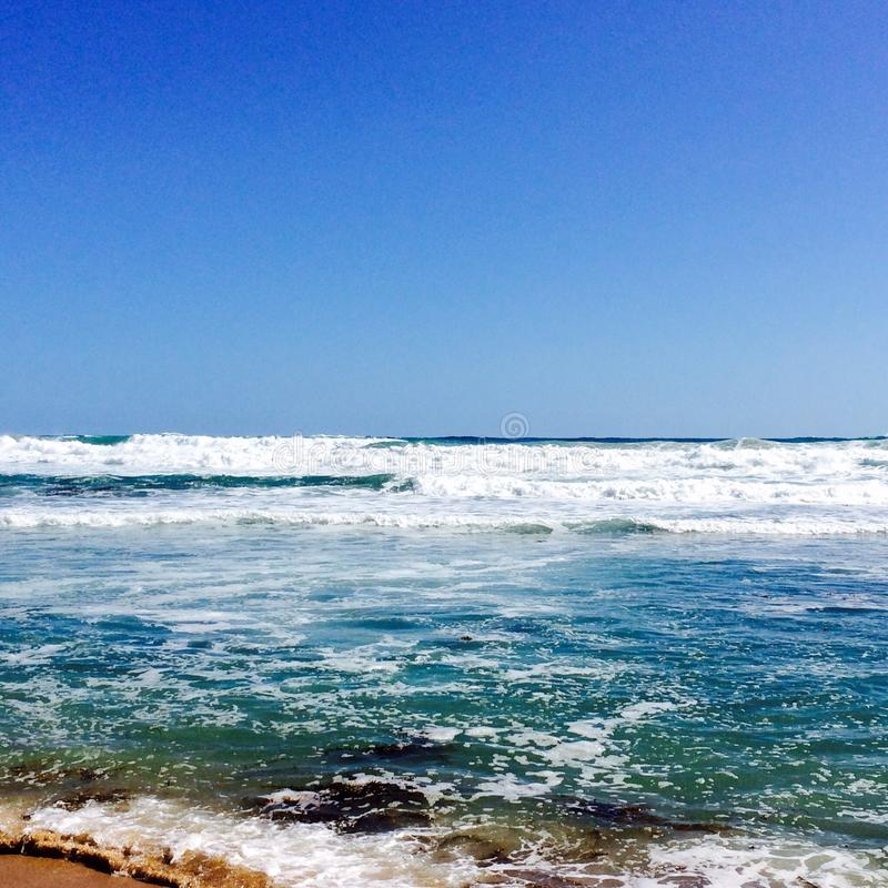 Mousse d'océan images stock