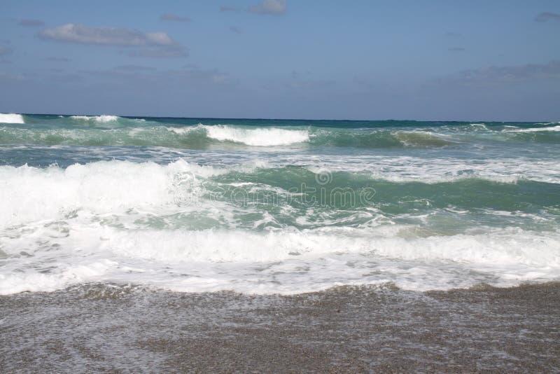 Mousse de mer et ciel bleu image stock