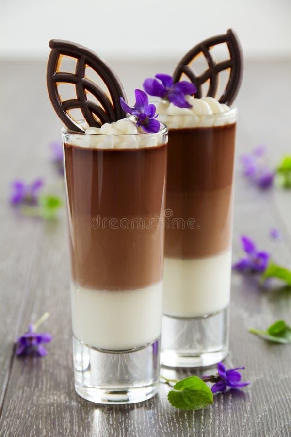 Mousse di cioccolato fotografie stock libere da diritti