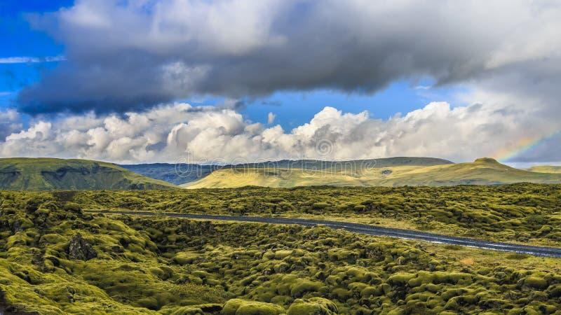 Mousse verte, Lava Field, Grindavik, Islande photographie stock